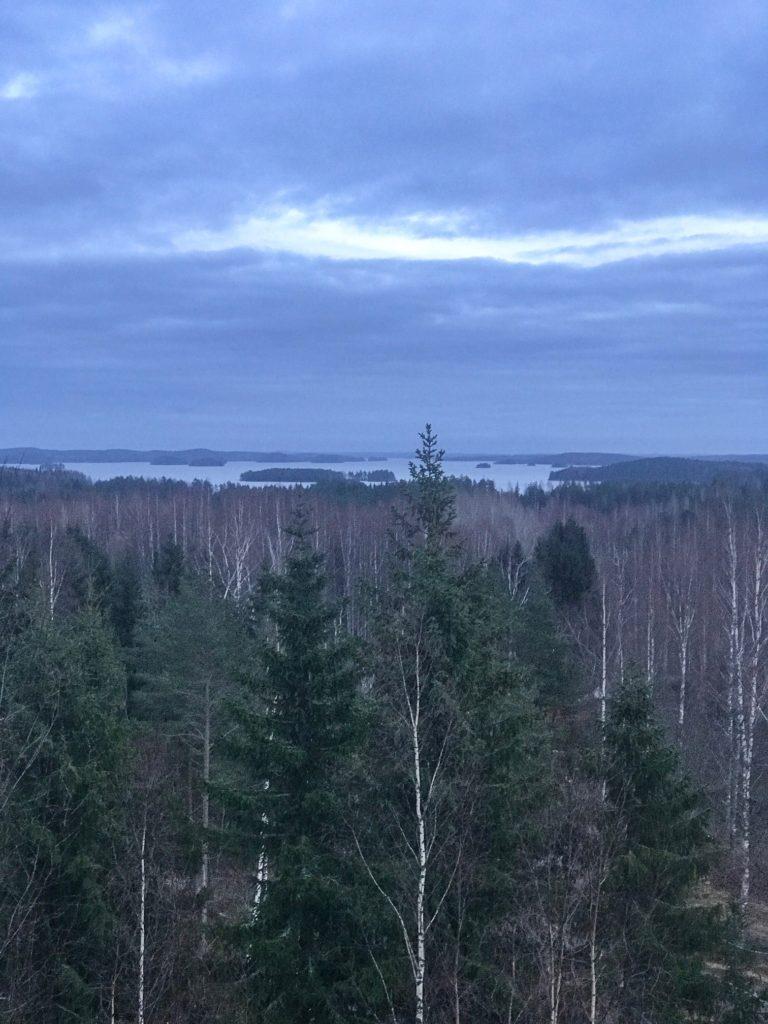 Linnansaari pikkujoulut Järvisydämessä